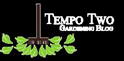 Tempo Two